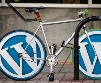 Dienst WordPress website laten maken